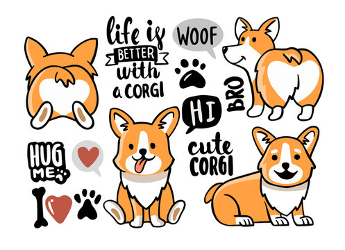 Cute Corgi set with lettering and elements