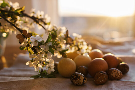 Blooming cherry branch with butterfly and modern  easter eggs and  on rustic cloth in sunny light