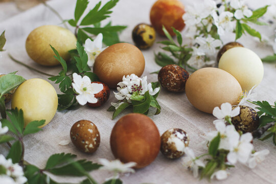 Modern brown easter eggs with spring flowers on rustic linen cloth. Happy Easter! Aesthetic