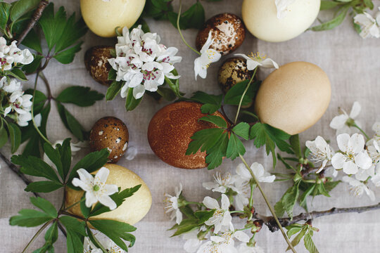 Happy Easter! Modern brown easter eggs with spring flowers flat lay on rustic linen