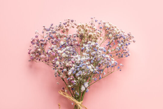 Bouquet of blue gypsophila on pink background. Floral pattern.