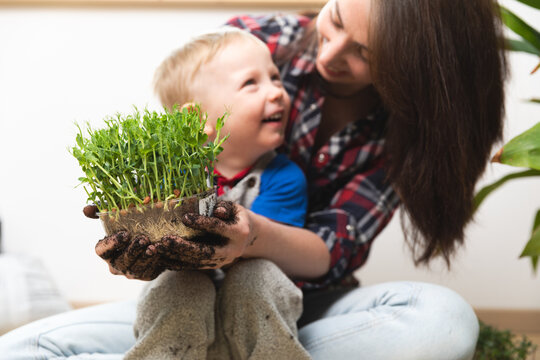 Hobbies at home gardening - Young mother and child holding peas with sprouts in container with visible roots in hands covered with dirt and smiling.