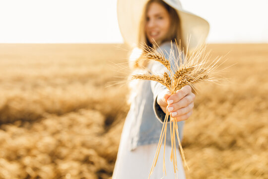 young woman with a bouquet of wheat, in a dress in a wheat field at sunset