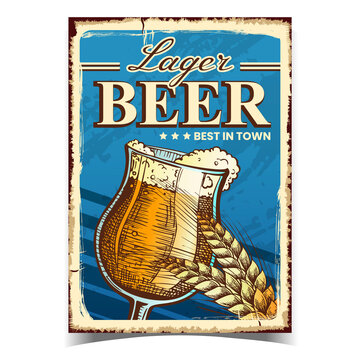 Lager Beer Creative Advertising Banner Vector. Beer Alcoholic Drink Glass Cup And Wheat Spike On Promotional Poster. Foamy Refreshment Beverage Template Hand Drawn Concept Illustration