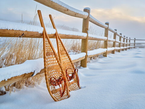 classic wooden Huron snowshoes in winter scenery at foothills of Rocky Mountains in northern Colorado - Lory State Park