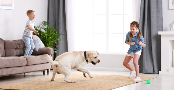Kids with dog playing at home