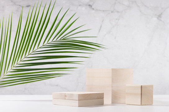 Wooden podiums with green palm leaf in sunlight on white wood table and marble wall. Fashion showcase for cosmetic products, goods, shoes, bags, watches.