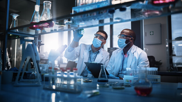Modern Medical Research Laboratory: Two Scientists Wearing Face Masks use Microscope, Analyse Sample in Petri Dish, Discuss Innovative Technology. Advanced Scientific Lab for Medicine, Biotechnology