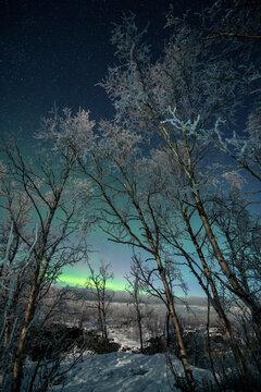 A bright Aurora Borealis (Northern Lights) in Abisko National Park, Sweden, Scandinavia, Europe
