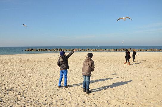 Kinder füttern Möwen am Ostseestrand