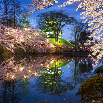 Sakura festival at Takada castle, Joetsu, Niigata prefecture, Japan