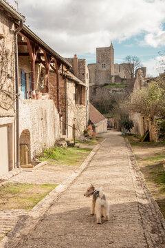 Le château de Brancion est un ancien château fort, du 13ième siècle, dont les vestiges se dressent sur la commune de Martailly-lès-Brancion dans le département de Saône-et-Loire, en région Bourgogne.