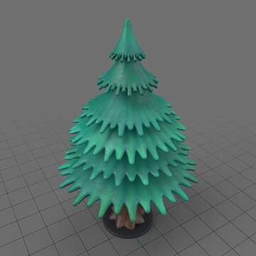 Miniature fir tree