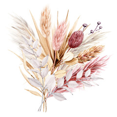 Dried flowers watercolor drawing. Pampas grass, tropical palm leaves, wildflowers.