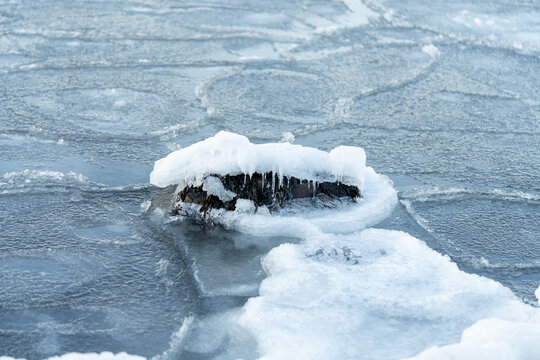 Costal Winter