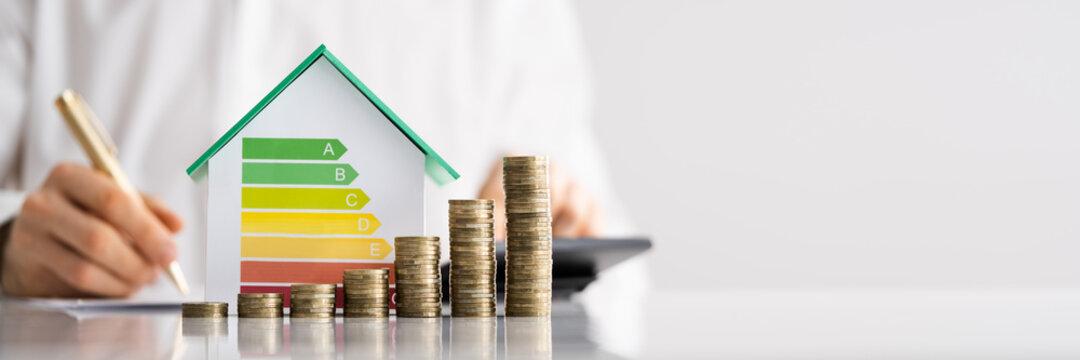 House Energy Audit. Efficient Consumption Invoice