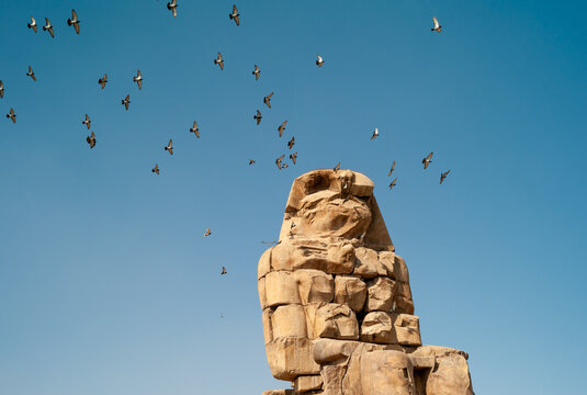 Colossi of Memnon Monumental Statue in Egypt