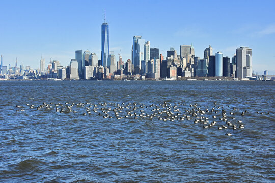 Lower Manhattan skyline of New York City seen from Liberty State Park, New Jersey.