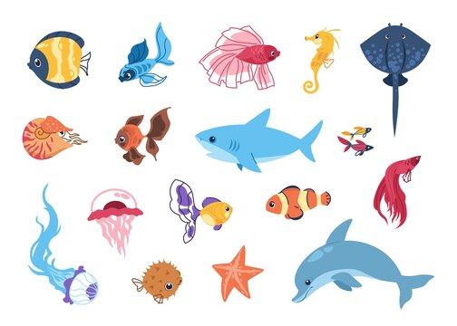 Cartoon sea animals. Funny tropic underwater creatures, colorful exotic aquarium fish set. Marine stingray or seahorse, cute shark and dolphin. Isolated bright undersea inhabitant. Vector ocean fauna