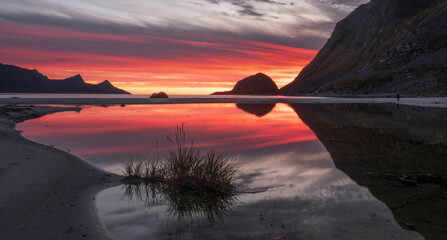 red sunset  reflected in the water on a paradise beach Haukland with white sand, and mountains the Lofoten Islands in polar Norway