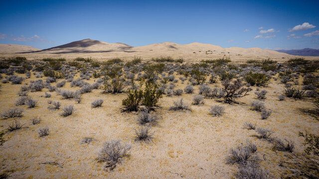 View on the Kelso dunes in the Mojave desert, USA