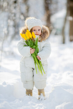 cute little girl in white winter clothes and a knitted hat walks in the winter forest with tulips. early spring, international women's day