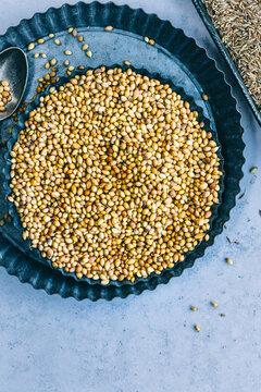 Still life of Coriander seeds