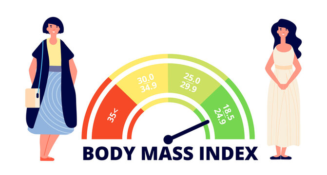Body mass index. Obese woman, fit and fat lady and bmi range chart. Weight measuring, medical overweight infographic utter vector concept. Illustration body obesity index, unhealthy weight