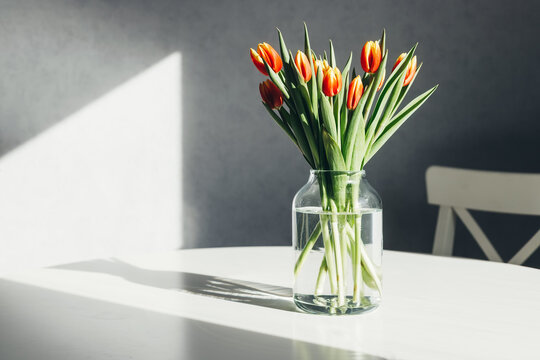 A bouquet of spring red-yellow tulips in a glass vase on a white table. Bright sunlight, harsh shadows. Minimalism. Copy space
