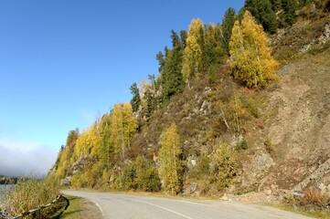 Highway along the mountain river Bii. Altai Republic
