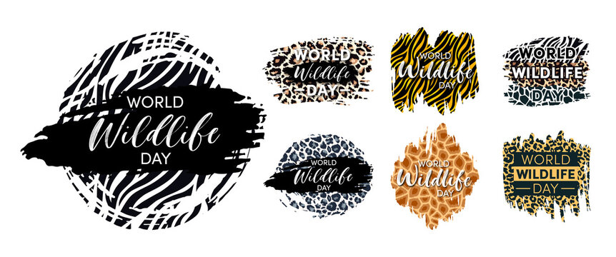 World Wildlife Day Designs set. Wild animals protect and conservation background. Grunge leopard, zebra, tiger and giraffe skin stiker template. Vector illustration