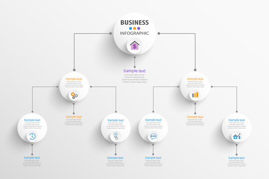 Business hierarchy organogram chart infographics. Corporate organizational structure graphic elements. Infographic design template with circles
