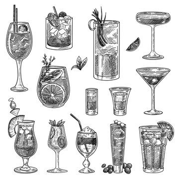 Cocktail glasses sketches set. Hand drawn martini, gin, wine, margarita, cognac, goblet, liquor, scotch, whiskey. Engraved vector illustration for long and shot drinks, bar menu, alcohol concept