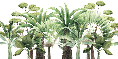 Fototapeta Vintage tropical palm trees. Seamless floral pattern with tropical trees on summer background. Template design for textiles, interior, clothes, wallpaper. Watercolot illustration.  Botanical art obraz