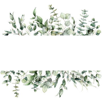 Watercolor floral border of eucalyptus branches, seeds and leaves. Hand painted frame of silver dollar plants isolated on white background. Illustration for design, print, fabric or background.