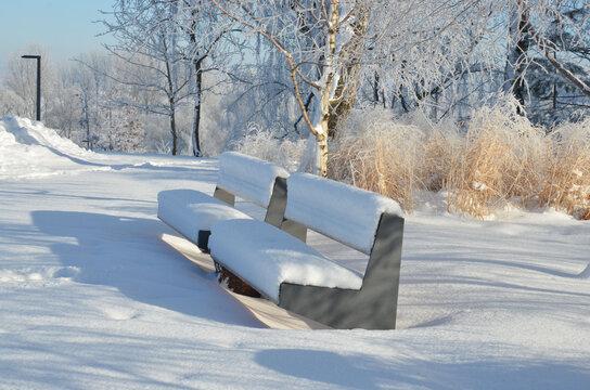 Sonnige Schneelandschaft im Park