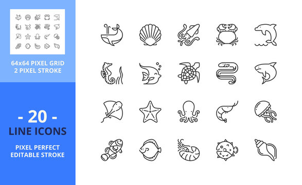 Line icons about sea animals. Pixel perfect 64x64 and editable stroke