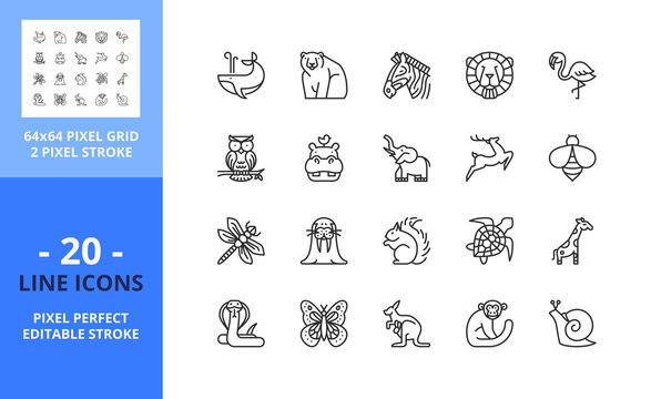 Line icons about wild animals. Pixel perfect 64x64 and editable stroke