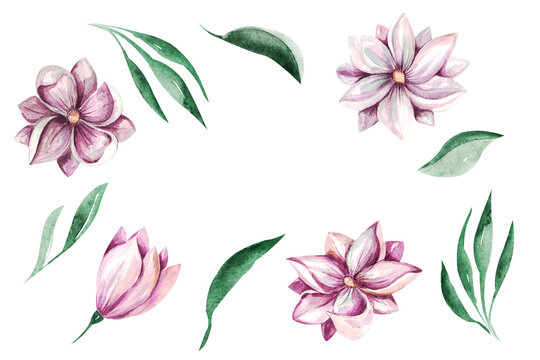 Frame Spring Magnolia Flowers clipart Delicate floral bouquet of magnolia on a white background