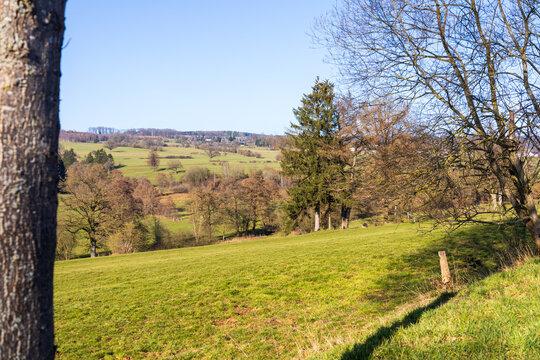 Paysage des Hautes Fagnes ( près de Malmedy et Stavelot, Belgique )