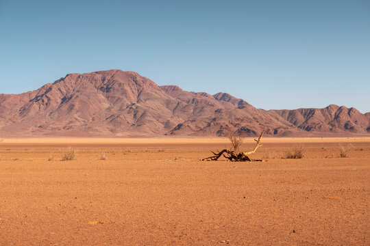 ancient Namib desert