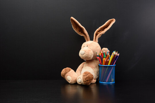 cute bunny sit on the background of a black chalk board, back to school