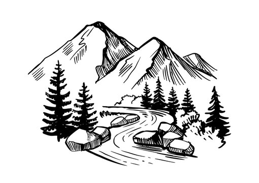 Mountain landscape with firs, river and stones. Wildlife sketch style