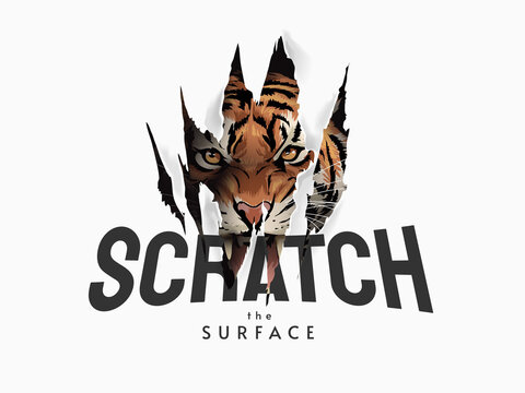 scratch the surface slogan with tiger face in claw mark illustration