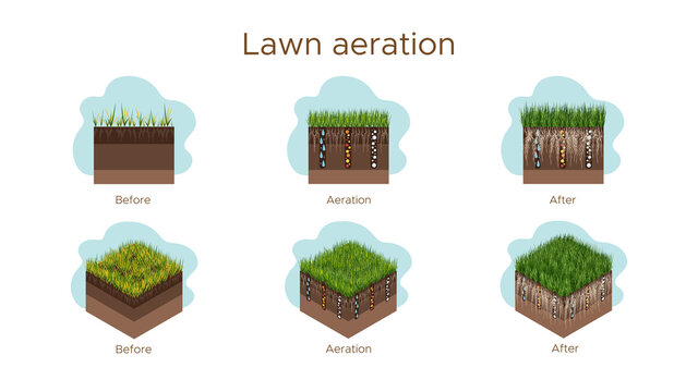 Lawn care - aeration and scarification. Labels by stage-before, during, and after. Intake of substances-water, oxygen, and nutrients to feed the grass and soil. Vector isometric and flat illustration