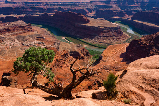 Picturesque landscape viewing Colorado River and dramatic canyons from the top of Dead Horse Point State Park in Moab, Utah.  #desert #nature #statepark #vertical #cliffs #bluffs #plateau #butte #sun