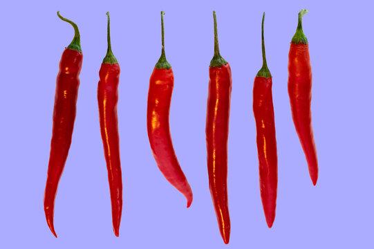 Mehrere Chili in einer Reihe auf lila Hintergrund