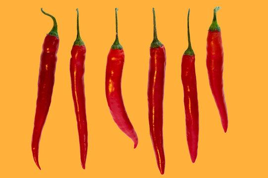 Mehrere Chili in einer Reihe auf orangem Hintergrund