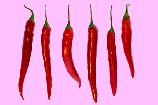 Mehrere Chili in einer Reihe auf pinkfarbenem Hintergrund