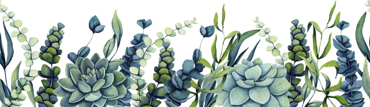 Seamless Border of Watercolor Succulent and Herbs